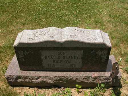 BERGEN, LARRY L. - Union County, Ohio | LARRY L. BERGEN - Ohio Gravestone Photos