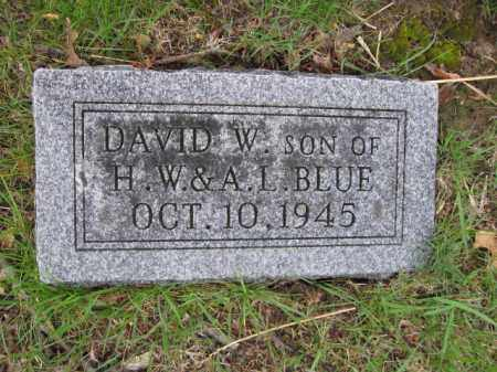 BLUE, DAVID W. - Union County, Ohio | DAVID W. BLUE - Ohio Gravestone Photos