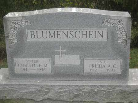 BLUMENSCHEIN, FRIEDA A.C. - Union County, Ohio | FRIEDA A.C. BLUMENSCHEIN - Ohio Gravestone Photos