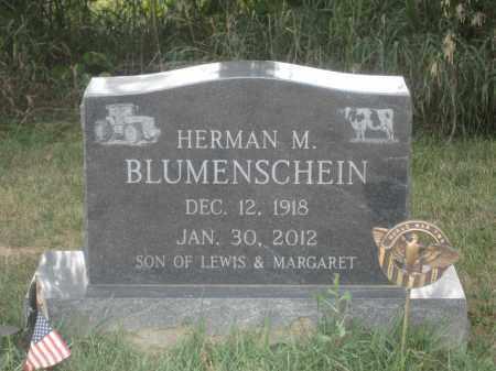 BLUMENSCHEIN, HERMAN M. - Union County, Ohio   HERMAN M. BLUMENSCHEIN - Ohio Gravestone Photos