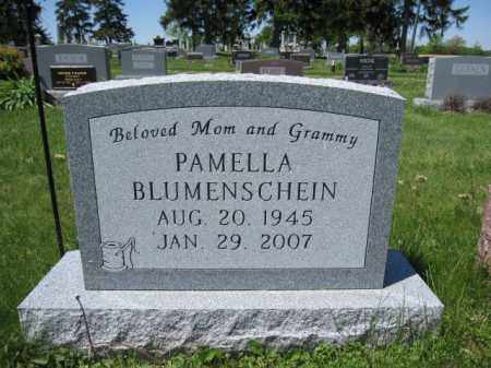 BLUMENSCHEIN, PAMELLA - Union County, Ohio | PAMELLA BLUMENSCHEIN - Ohio Gravestone Photos