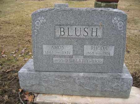 BLUSH, AMOS - Union County, Ohio | AMOS BLUSH - Ohio Gravestone Photos