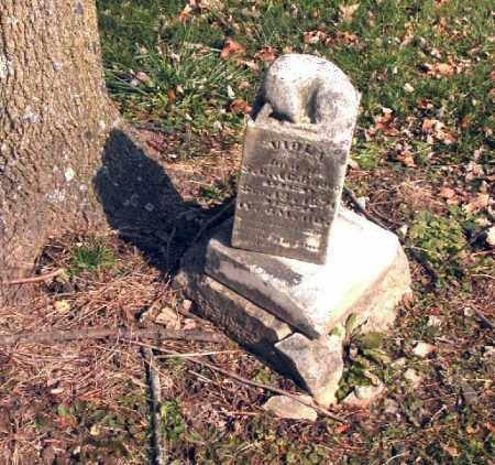 BOORD, VIOLA - Union County, Ohio | VIOLA BOORD - Ohio Gravestone Photos