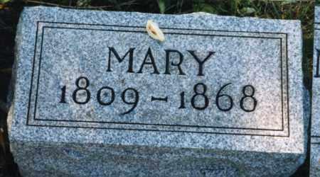 BRAKE, MARY POLLY SHIRK - Union County, Ohio | MARY POLLY SHIRK BRAKE - Ohio Gravestone Photos