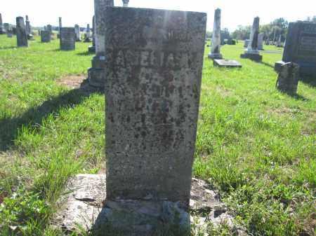 BROWN, AMELIA - Union County, Ohio | AMELIA BROWN - Ohio Gravestone Photos
