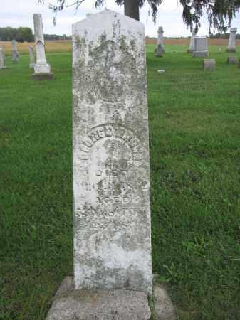 BROWN, GEORGE - Union County, Ohio | GEORGE BROWN - Ohio Gravestone Photos