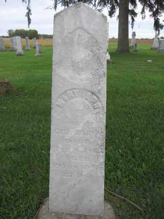 BROWN, MARY ANN - Union County, Ohio   MARY ANN BROWN - Ohio Gravestone Photos