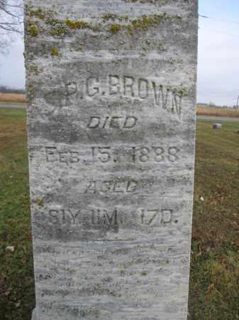 BROWN, S.P.G. - Union County, Ohio | S.P.G. BROWN - Ohio Gravestone Photos
