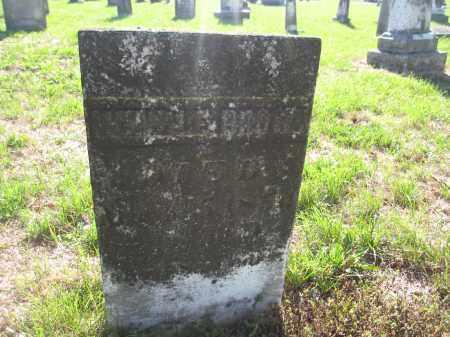 BROWN, WINDLE - Union County, Ohio   WINDLE BROWN - Ohio Gravestone Photos