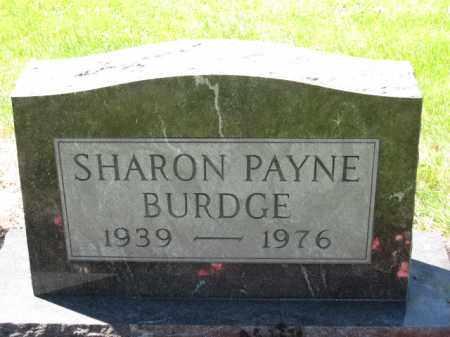 BURDGE, SHARON PAYNE - Union County, Ohio | SHARON PAYNE BURDGE - Ohio Gravestone Photos