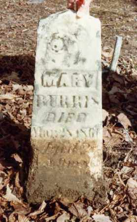 BURRIS, MARY - Union County, Ohio | MARY BURRIS - Ohio Gravestone Photos