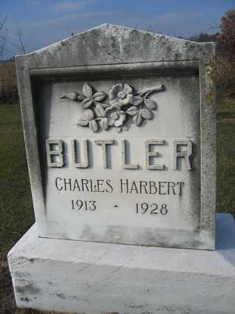 BUTLER, CHARLES HARBERT - Union County, Ohio   CHARLES HARBERT BUTLER - Ohio Gravestone Photos