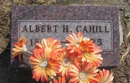 CAHILL, ALBERT H. - Union County, Ohio   ALBERT H. CAHILL - Ohio Gravestone Photos
