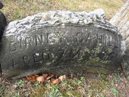 CAHILL, BIRNEY - Union County, Ohio | BIRNEY CAHILL - Ohio Gravestone Photos