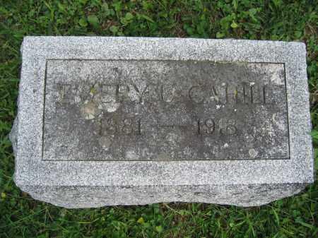 CAHILL, EMERY U. - Union County, Ohio | EMERY U. CAHILL - Ohio Gravestone Photos