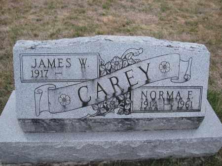 CAREY, JAMES W. - Union County, Ohio | JAMES W. CAREY - Ohio Gravestone Photos