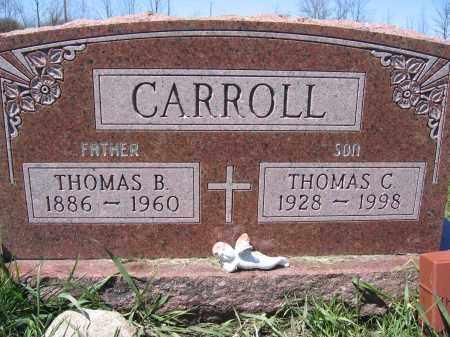 CARROLL, THOMAS C - Union County, Ohio | THOMAS C CARROLL - Ohio Gravestone Photos
