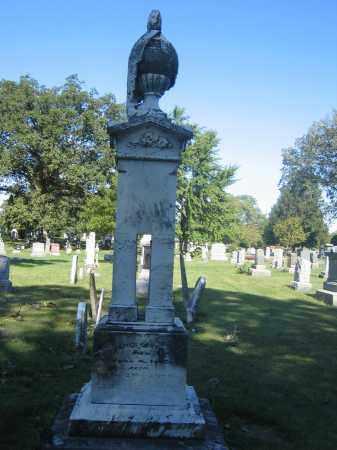 CARTER, JAMES - Union County, Ohio | JAMES CARTER - Ohio Gravestone Photos