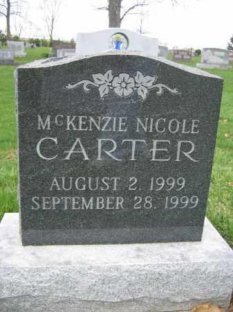 CARTER, MCKENZIE NICOLE - Union County, Ohio | MCKENZIE NICOLE CARTER - Ohio Gravestone Photos