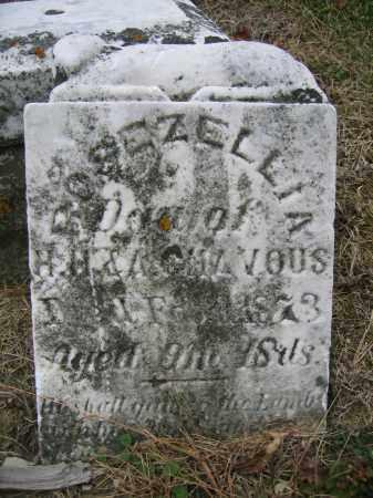 CHAVOUS, ROSEZELLIA - Union County, Ohio | ROSEZELLIA CHAVOUS - Ohio Gravestone Photos