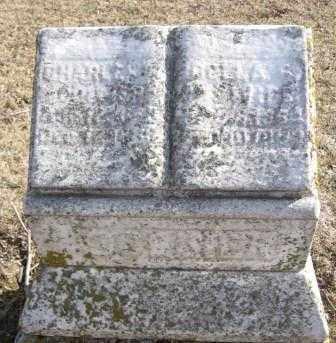COLLIER, CHARLES - Union County, Ohio | CHARLES COLLIER - Ohio Gravestone Photos