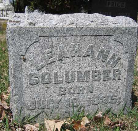 COLUMBER, LEAHANN - Union County, Ohio | LEAHANN COLUMBER - Ohio Gravestone Photos