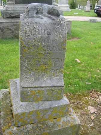 COOK, LOUIE - Union County, Ohio | LOUIE COOK - Ohio Gravestone Photos