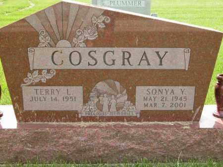 COSGRAY, TERRY L. - Union County, Ohio | TERRY L. COSGRAY - Ohio Gravestone Photos