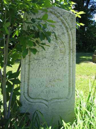 DAVIS, STEPHEN T. - Union County, Ohio   STEPHEN T. DAVIS - Ohio Gravestone Photos