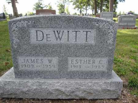 DEWITT, JAMES W. - Union County, Ohio | JAMES W. DEWITT - Ohio Gravestone Photos