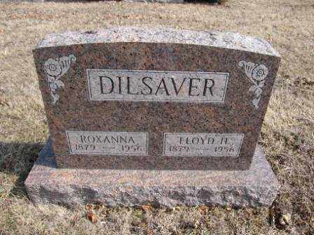 DILSAVER, ROXANNA - Union County, Ohio | ROXANNA DILSAVER - Ohio Gravestone Photos