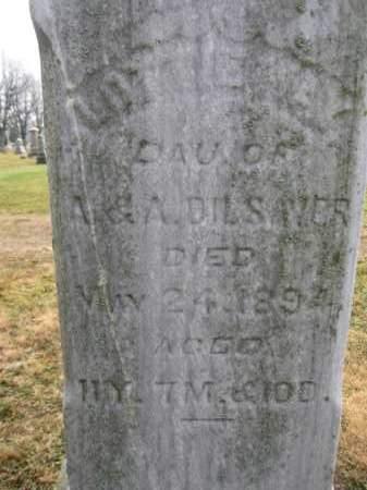 DILSAVER, LOTTIE MAY - Union County, Ohio | LOTTIE MAY DILSAVER - Ohio Gravestone Photos