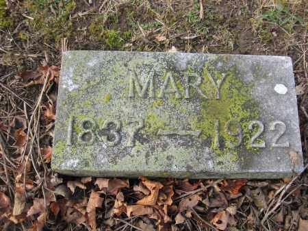 DILSAVER, MARY - Union County, Ohio | MARY DILSAVER - Ohio Gravestone Photos