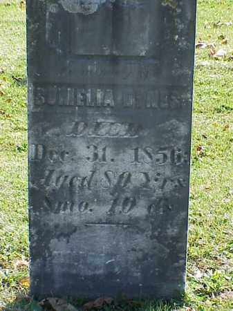DYNES, SOMELIA - Union County, Ohio | SOMELIA DYNES - Ohio Gravestone Photos