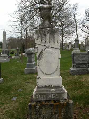 DYNES, UNKNOWN - Union County, Ohio   UNKNOWN DYNES - Ohio Gravestone Photos