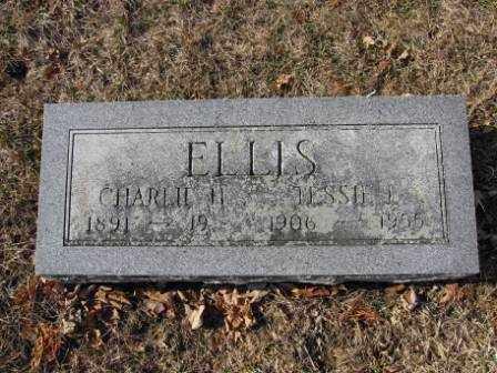 ELLIS, CHARLIE H - Union County, Ohio | CHARLIE H ELLIS - Ohio Gravestone Photos