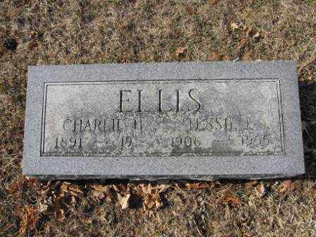 ELLIS, CHARLIE H. - Union County, Ohio | CHARLIE H. ELLIS - Ohio Gravestone Photos