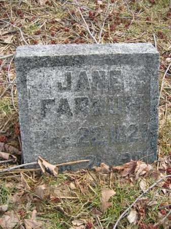 FARNUM, JANE - Union County, Ohio | JANE FARNUM - Ohio Gravestone Photos