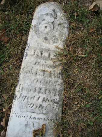 FAWN, JANET - Union County, Ohio | JANET FAWN - Ohio Gravestone Photos