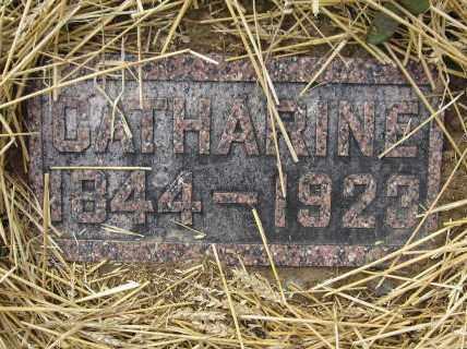 FENSEL, CATHARINE - Union County, Ohio | CATHARINE FENSEL - Ohio Gravestone Photos