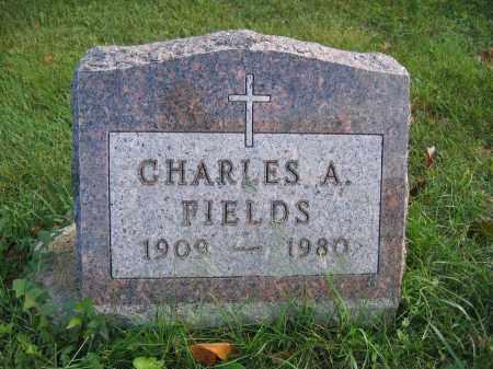 FIELDS, CHARLES A. - Union County, Ohio   CHARLES A. FIELDS - Ohio Gravestone Photos