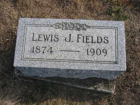 FIELDS, LEWIS J. - Union County, Ohio   LEWIS J. FIELDS - Ohio Gravestone Photos