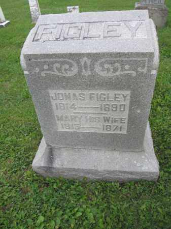 FIGLEY, MARY - Union County, Ohio | MARY FIGLEY - Ohio Gravestone Photos