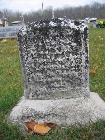 FIGLEY, MARY ANN - Union County, Ohio | MARY ANN FIGLEY - Ohio Gravestone Photos