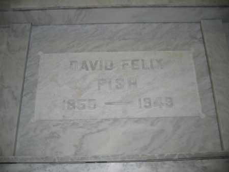 FISH, DAVID FELIX - Union County, Ohio | DAVID FELIX FISH - Ohio Gravestone Photos
