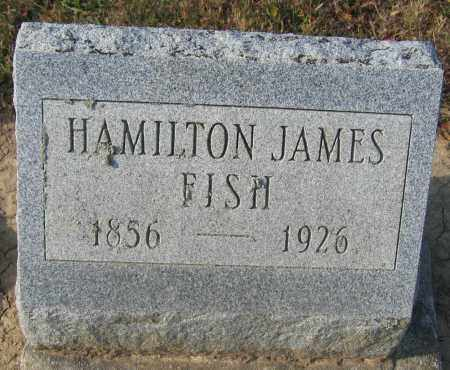 FISH, HAMILTON JAMES - Union County, Ohio | HAMILTON JAMES FISH - Ohio Gravestone Photos
