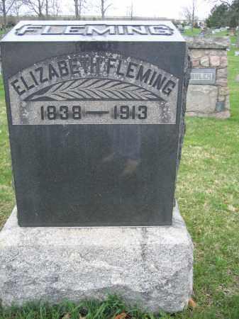 FLEMING, ELIZABETH - Union County, Ohio   ELIZABETH FLEMING - Ohio Gravestone Photos