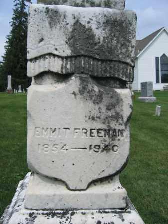 FREEMAN, EMMIT - Union County, Ohio | EMMIT FREEMAN - Ohio Gravestone Photos