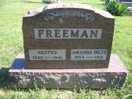 FREEMAN, FREDERICK D. - Union County, Ohio | FREDERICK D. FREEMAN - Ohio Gravestone Photos