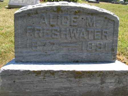 FRESHWATER, ALICE M. - Union County, Ohio | ALICE M. FRESHWATER - Ohio Gravestone Photos